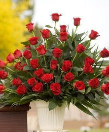 Sympathy arrangement basket with all red roses
