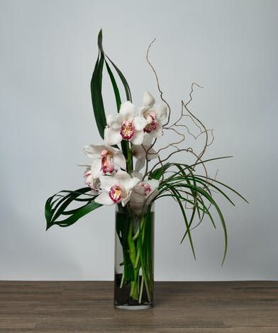 Cymbidium Orchids in a Tall Vase