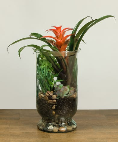 Large Glass vase with assorted blooming plants