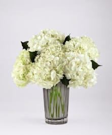 FTD® Ivory Hydrangea Bouquet by Vera Wang