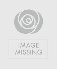 Sympathy arrangement with all pink roses and daisies