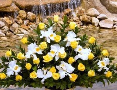 Sympathy Basket with orchids and yellow roses