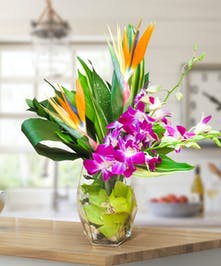 Vase with Birds of Paradise and Orchids with tropical foliage