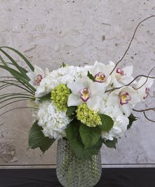 Vase of all white orchids and curly willow