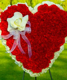 Heart with all red carnations and a white open rose