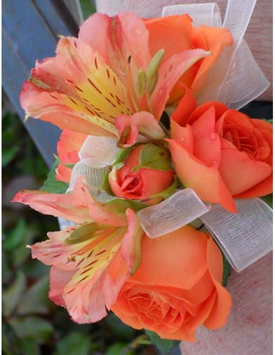 Roses and Alstroemeria Corsage