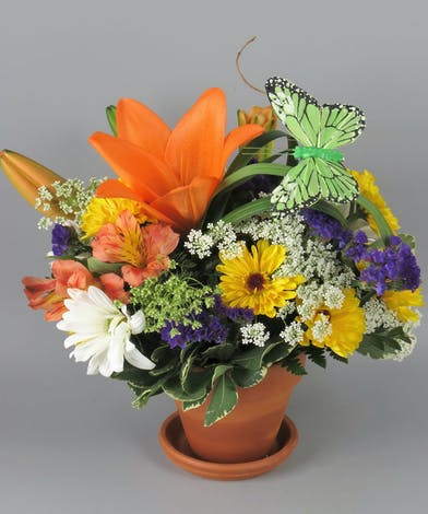 Summer flowers in a terra cotta pot with a butterfly