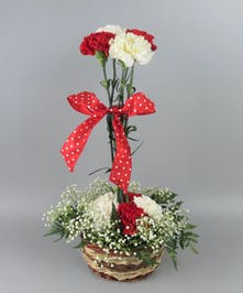 Red and White Carnations topiary in a basket