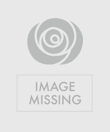 Casket Spray with red and yellow roses with orchids