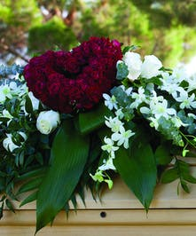 Casket Spray with white orchids and a red rose heart atop the design