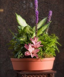 Assorted green plants with fresh cut flowers added